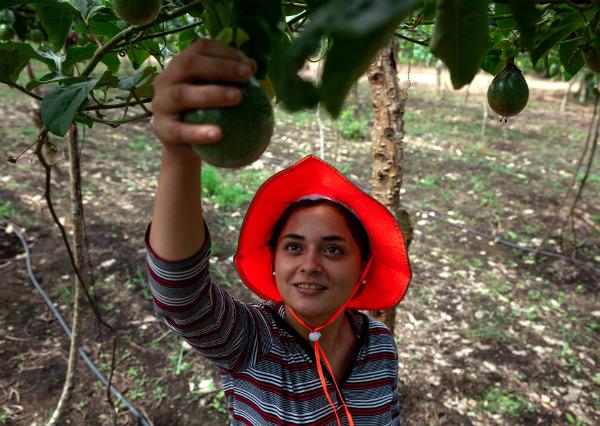 Los Jóvenes Agricultores de Jalapa: Milady